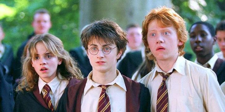 Фото №6 - 10 причин, почему из фильмов «Гарри Поттер» вышло бы отличное аниме ⚡