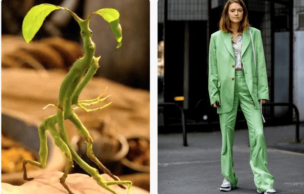 Фото №2 - Как одеться в стиле фантастических тварей: 5 крутых осенних аутфитов