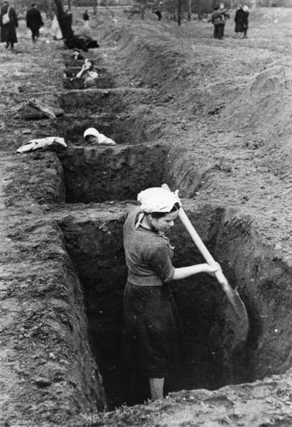 Фото №10 - Этот День Победы: как советский народ жил, любил и ждал все 1418 дней войны