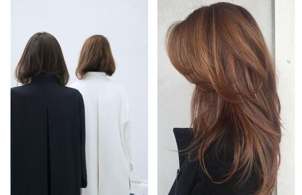Фото №1 - Длинные и густые: продукты для красоты волос