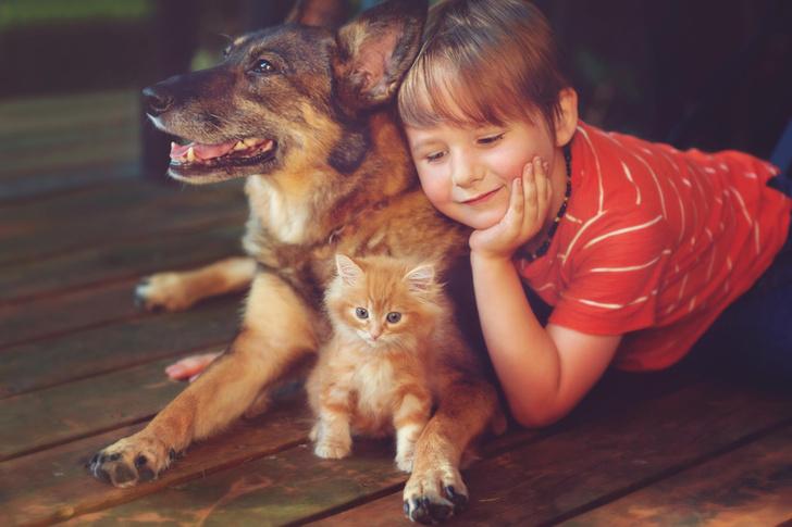 Фото №3 - Чем опасны домашние животные для маленьких детей?