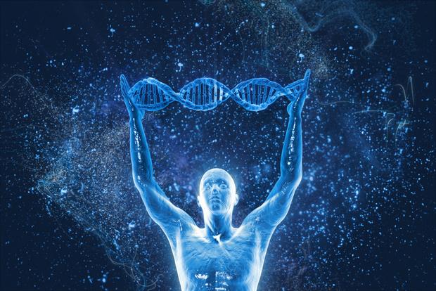 Фото №1 - Виртуальная модель плода поможет избежать генетических заболеваний