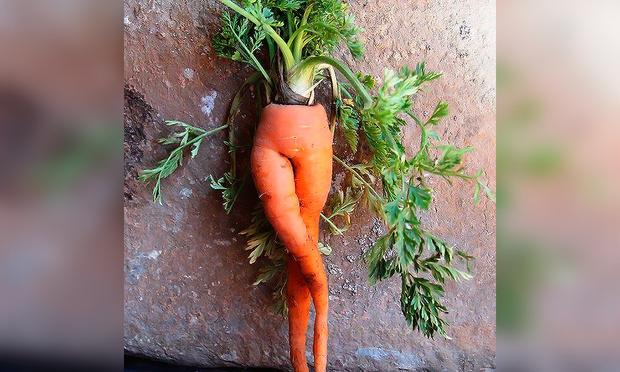 Фото №1 - Галерея невероятно эротичных морковок