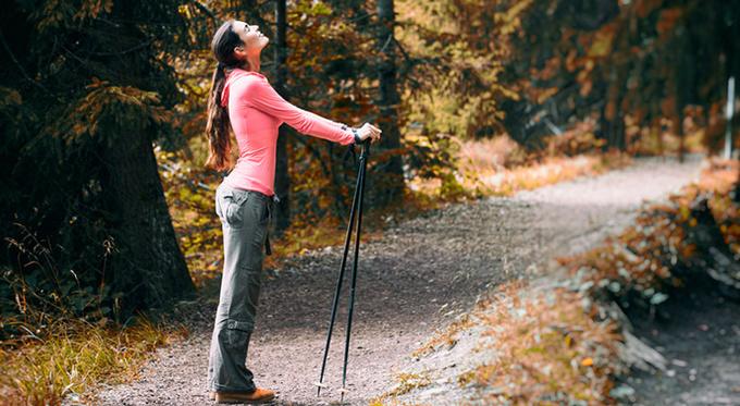 Освоить скандинавскую ходьбу