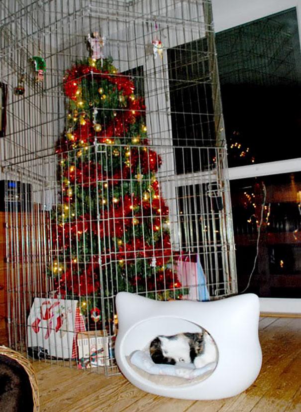 Фото №12 - Как защитить новогоднюю елку от кота: 7 самых хитрых способов с фотоинструкцией