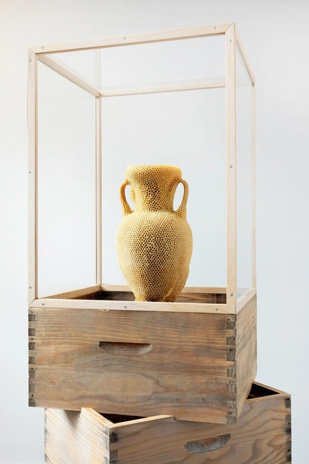 Фото №6 - Бюст Нефертити из пчелиных сот