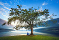 Медитация: помним то, чего не было?