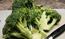 Вкусные блюда из брокколи: простые рецепты. Вторые блюда