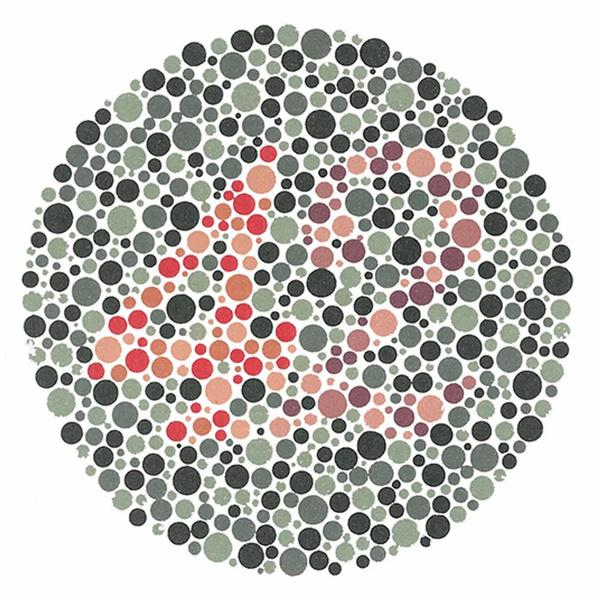 Фото №1 - Красный или зеленый: как дальтоники видят мир
