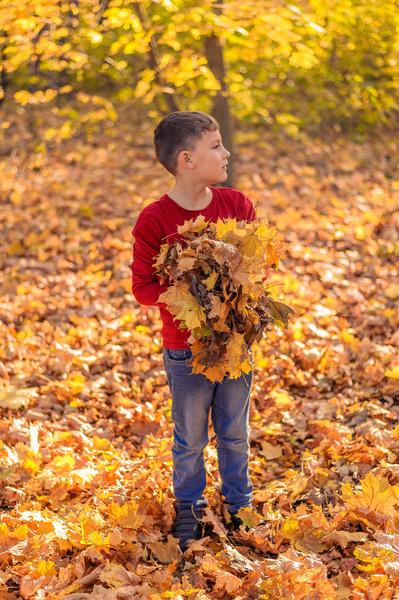 Фото №3 - Детский фотоконкурс «Собираем гербарий»: выбирай лучшее фото