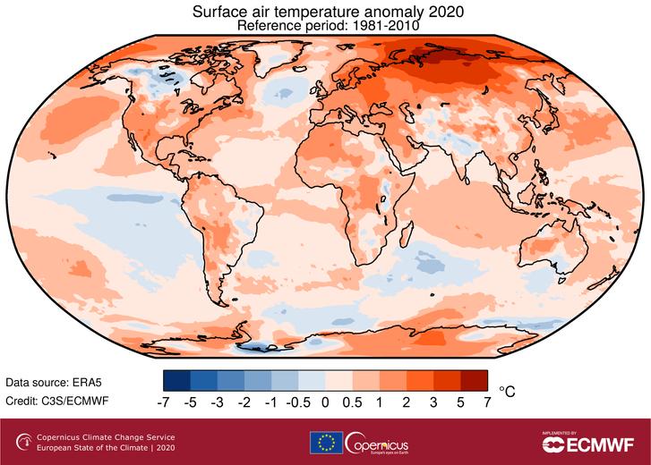 Фото №1 - 2020 год стал самым теплым за всю историю наблюдений в Европе