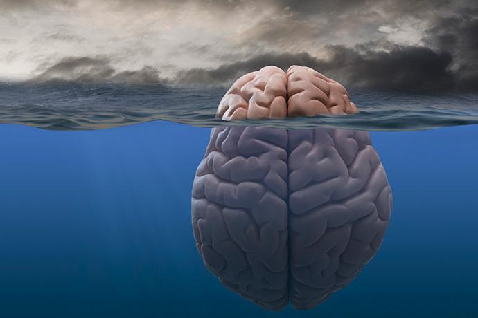 Секреты нашего мозга