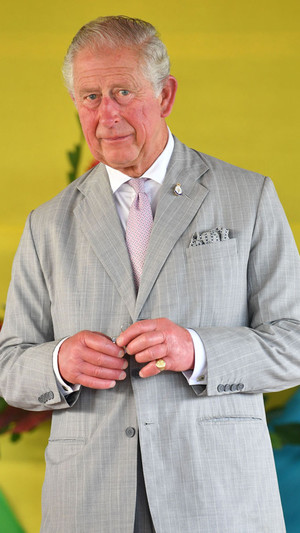 Фото №3 - Загадочное украшение: что означает кольцо на мизинце принца Чарльза