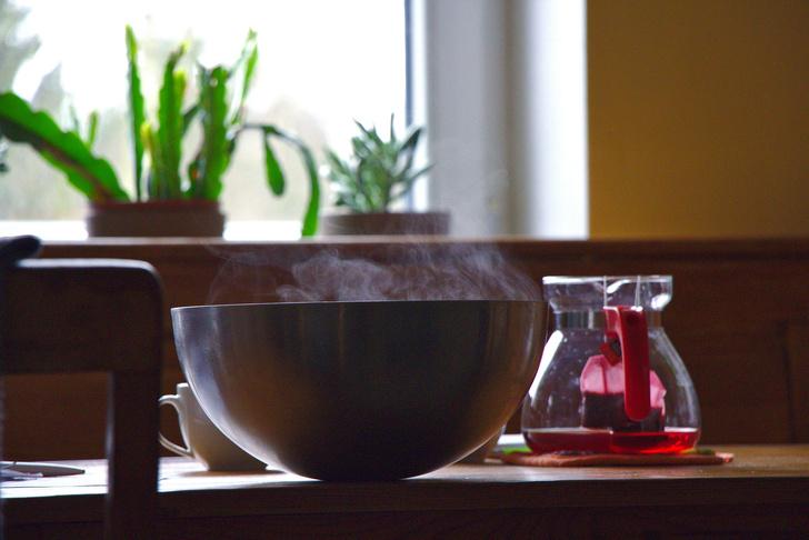 Как заваривать чайный гриб