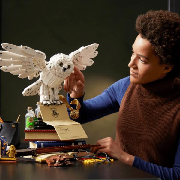 Фото №1 - LEGO выпустили набор в честь 20-летия киновселенной «Гарри Поттера» 🦉