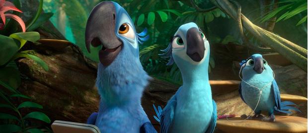 Фото №1 - Рио-2: по следам голубых попугаев. Викторина