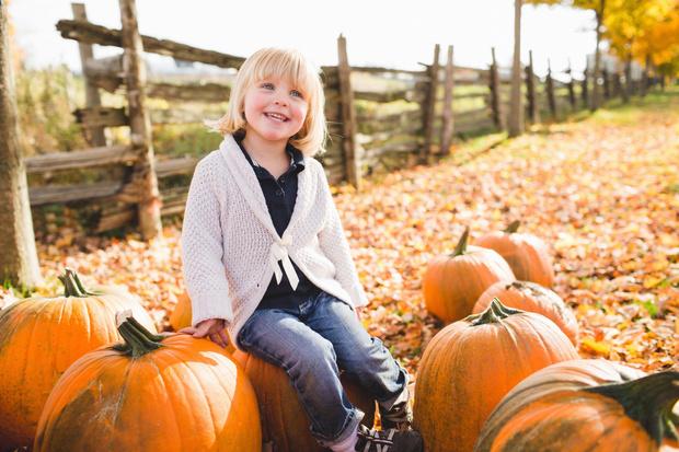 Фото №1 - 5 вещей, которые обязательно нужно сделать на даче в октябре