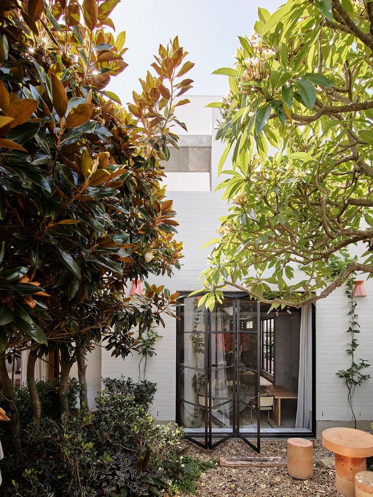 Фото №24 - Работаем дома: новая штаб-квартира студии Alexander & Co в Сиднее