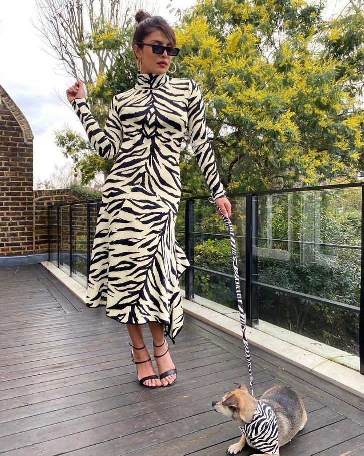 Фото №1 - Как белая тигрица: элегантный образ Приянки Чопры в платье с анималистичным принтом