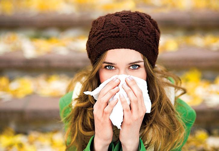 Фото №1 - Чихают все: как быстро победить простуду
