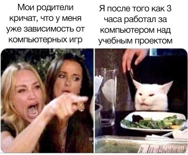 Фото №9 - 15 жизненных мемов про школу, карантин и дистанционку