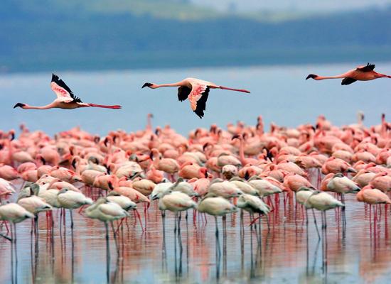 Фото №9 - 10 самых красивых озер в мире