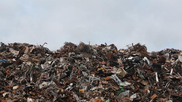 Фото №1 - В России могут увеличить штрафы за сброс мусора в неположенных местах