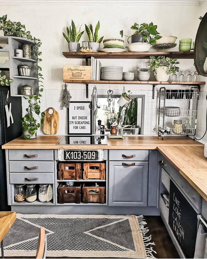 Фото №9 - Растения на кухне: 7 практичных идей