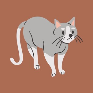 Фото №7 - Тест: Выбери котика, а мы скажем, что парням нравится в тебе