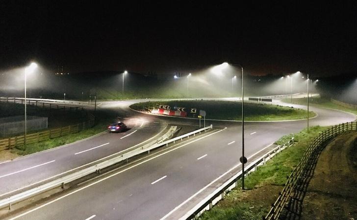 Фото №1 - Ученые признали светодиодные фонари опасными для насекомых