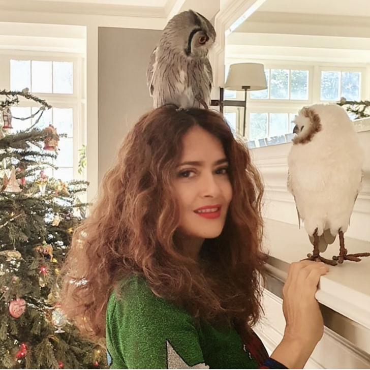 Фото №3 - Это очень странно: Сальма Хайек часто медитирует с живой совой на голове