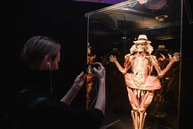 Фото №3 - «Такой анатомии не надо бояться, ее надо знать»: посетители высоко оценили выставку Body Worlds
