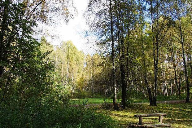 Фото №13 - 13 лучших парков Москвы для семейного отдыха