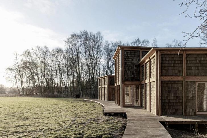 Фото №2 - Деревянная школа в датском лесу