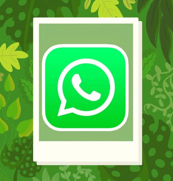 Фото №1 - В WhatsApp появится возможность редактировать голосовые сообщения перед отправкой