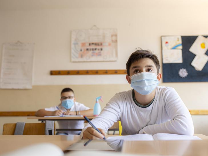 Фото №4 - Дистанционное обучение: почему не стоит его бояться, и что ждет наших детей в будущем