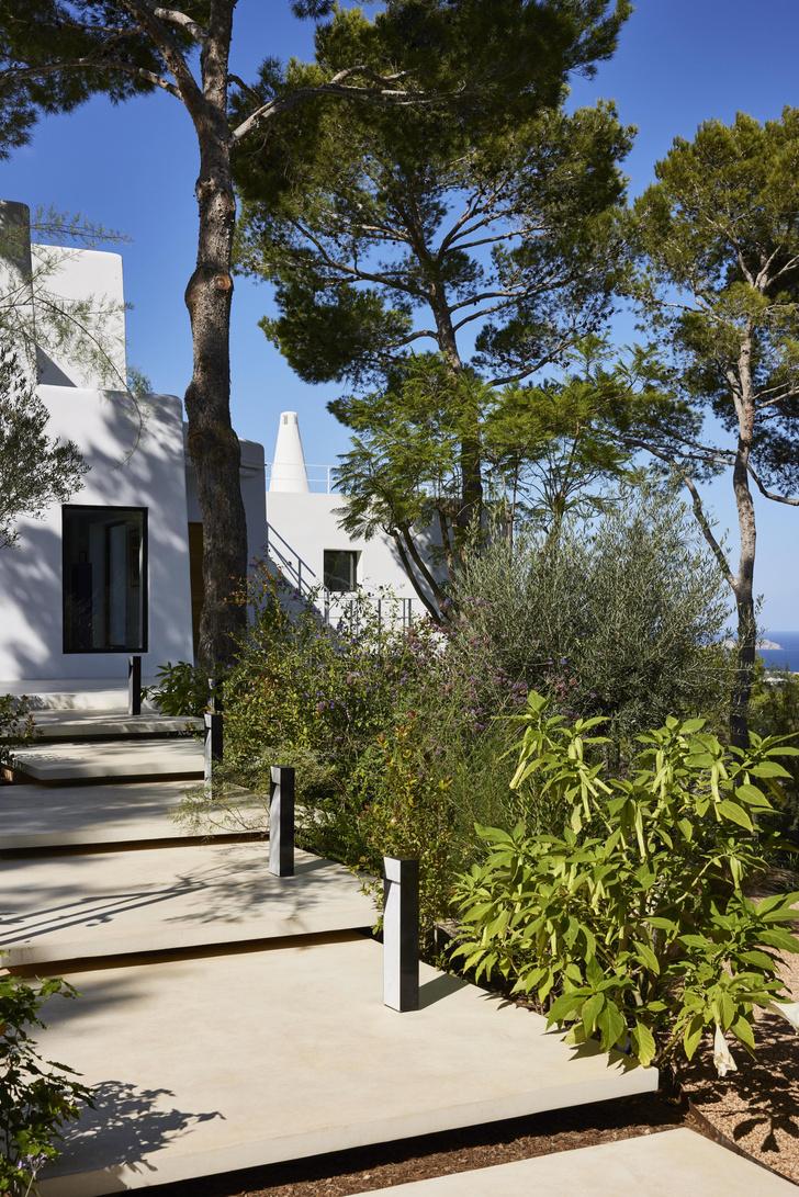 Фото №5 - Вилла с видом на сосновый лес и море на Ибице