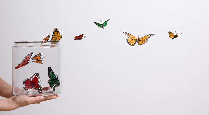 Свобода воли: иллюзия или реальность?