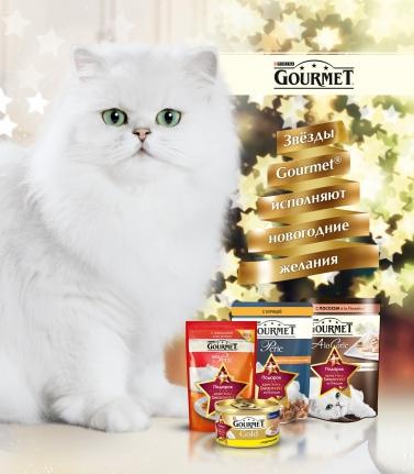 Фото №1 - Равшана Куркова и Gourmet исполняют новогодние мечты