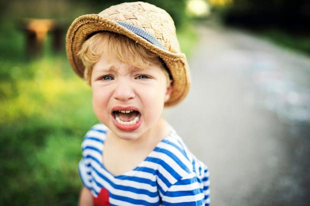 Фото №1 - «Сын, 2 года, до сих пор не говорит и часто кричит»