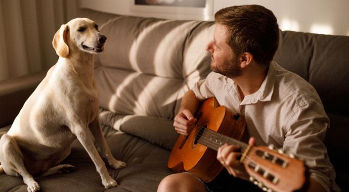Что расскажет о хозяине поведение его собаки?