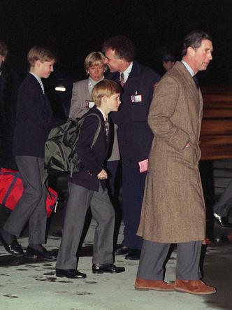Фото №2 - Начало конца: как развод родителей повлиял на отношения Гарри и Уильяма