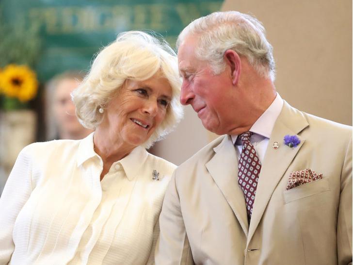 Фото №1 - Почему отношения Чарльза с Камиллой прошли проверку временем (а брак с Дианой— нет)