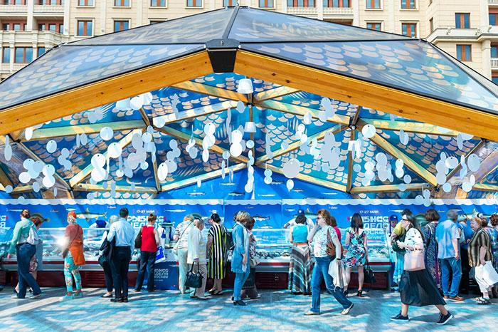 """Фото №2 - Последние выходные фестиваля """"Рыбная неделя"""""""