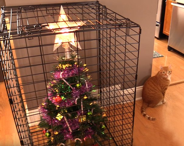 Фото №11 - Как защитить новогоднюю елку от кота: 7 самых хитрых способов с фотоинструкцией