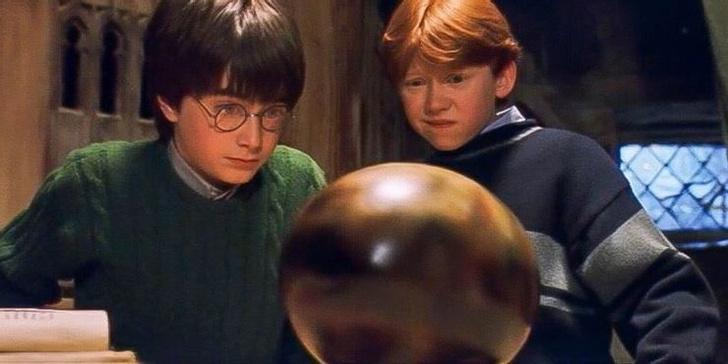 Фото №5 - «Гарри Поттер»: самые интересные и малоизвестные факты про драконов 🐲