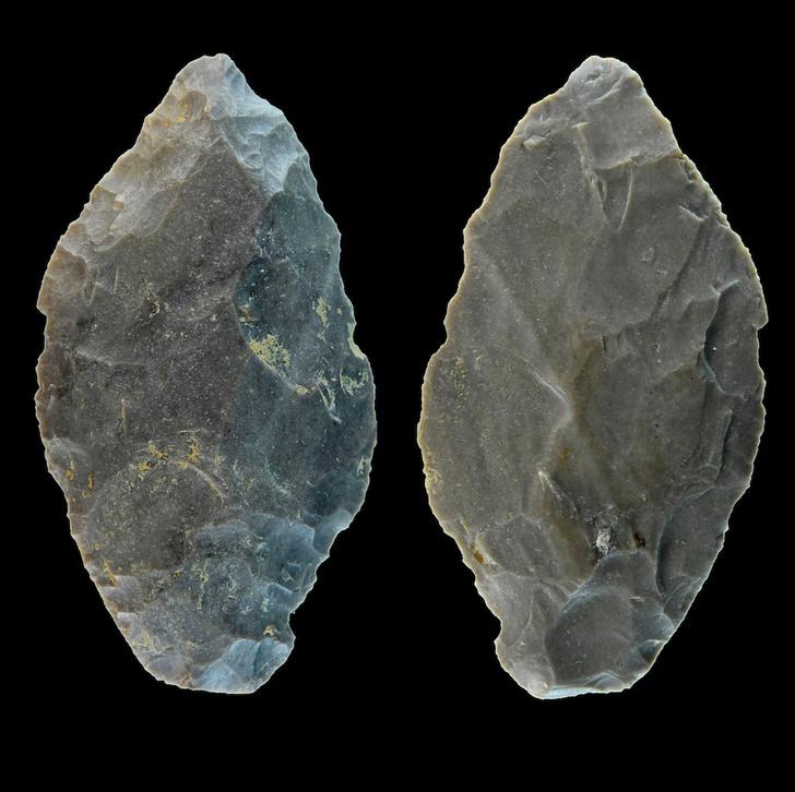 Фото №1 - В Германии обнаружили наконечник копья, возрастом 65 000 лет