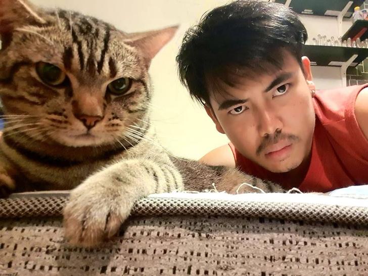 Фото №1 - Что делают с нами кошки, когда мы спим: 12 реальных фото и видео