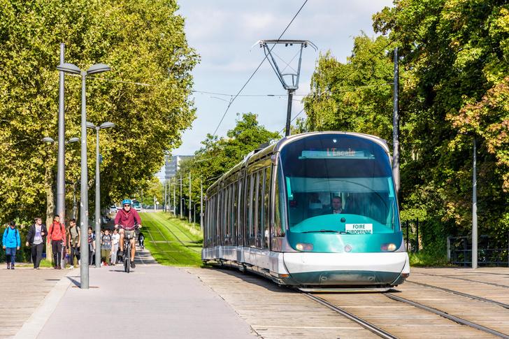 Фото №1 - Почему у трамвая и троллейбуса разные токосъемники?