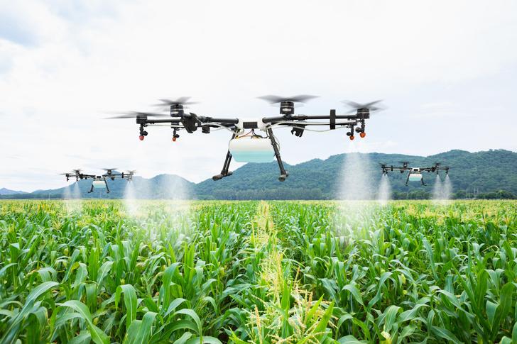 Фото №6 - Новый робот борозды не испортит. Об успехах сельского хозяйства XXI века
